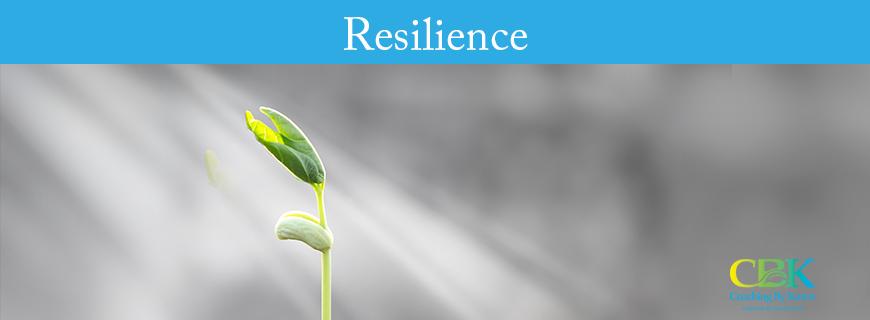 cbk-resilience-image
